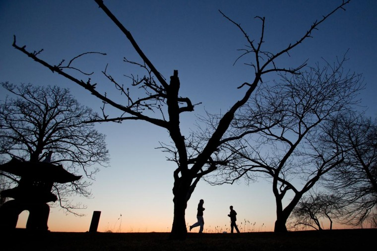 Joggers run before the sunrise underneath leafless trees along the banks of Alster Lake in Hamburg, Germany, on April 3, 2013. (Christian Charisius/AFP/Getty Images)