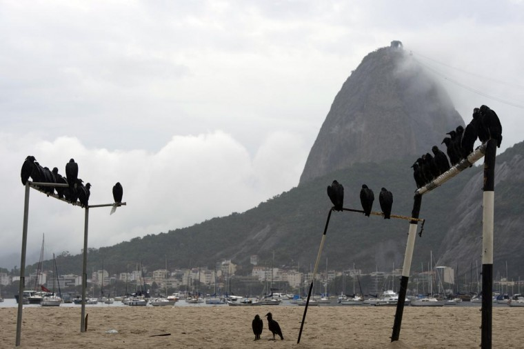 Vultures stand on football goals on Botafogo beach, with the Sugar Loaf landmark on the background in Rio de Janeiro, Brazil on April 3, 2013. (Christophe Simon/AFP/Getty Images)