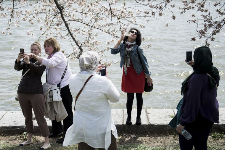 April 7, 2013: Tourists pose with cherry blossoms along the Tidal Basin in Washington. (Brendan Smialowski/AFP/Getty Images)