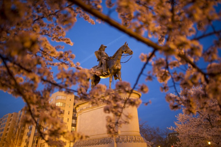 April 08, 2013: The statue of US Army General Winfield Scott (1786–1866) is seen trough the cherry blossom trees adjacent to Scott Circle in Washington, DC. (Mladen Antonov/AFP/Getty Images)