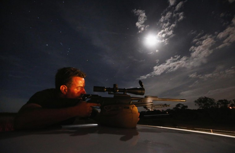 Kangaroo shooter Steven O'Donnell rests his .223 calibre rifle on the roof of his truck as he aims at a group of kangaroos on a property located on the outskirts of Australia's capital city Canberra March 23, 2013. O'Donnell, a professional plumber, shoots kangaroos on local farmer's properties around three times a week as part of the annual cull, running from March until the end of July, which involves the legal shooting and tagging of thousands of eastern grey kangaroos per year in the Australian Capital Territory. Picture taken March 23, 2013. (David Gray/Reuters)