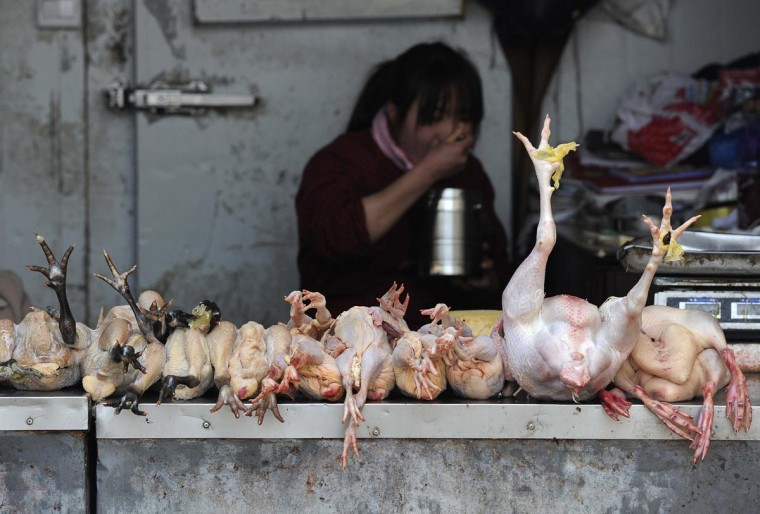 A vendor eats as she waits for customers at a poultry market in Hefei, Anhui province, April 1, 2013. Two people in Shanghai, one of China's largest cities, died this month after contracting a strain of avian influenza that had never been passed to humans before, the official Xinhua News Agency reported on Sunday. (Stringer/Reuters)