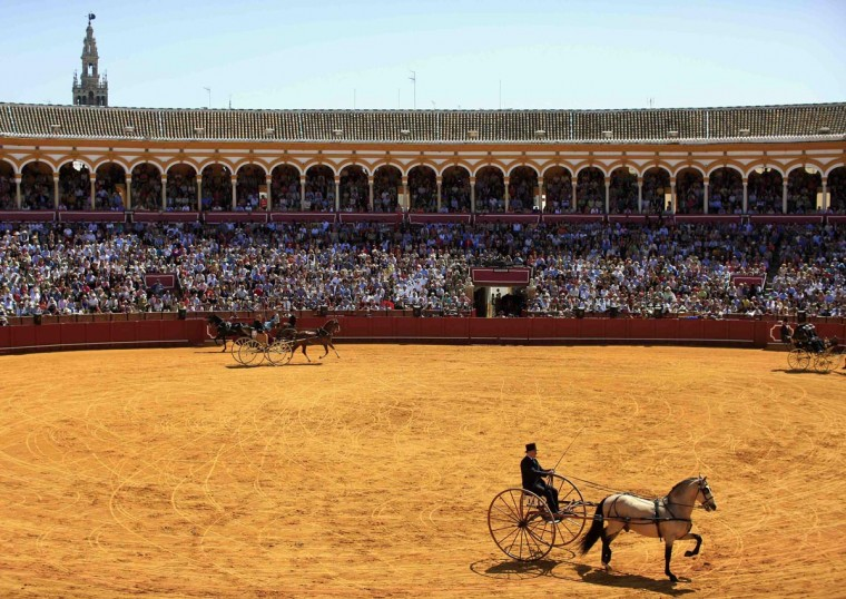 A man steers a carriage as he participates in a carriage exhibition at the Maestranza bullring in the Andalusian capital of Seville, southern Spain April 14, 2013. (Marcelo del Pozo/Reuters)