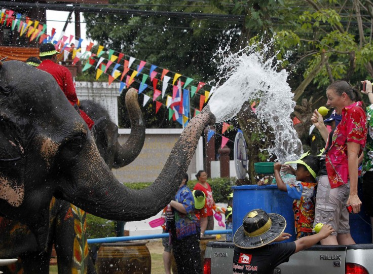 Elephants spray water at tourists in celebration of the Songkran water festival in Thailand's Ayutthaya province, about 80 km (50 miles) north of Bangkok. Songkran, the most celebrated festival of the year, marks the start of Thailand's traditional New Year. (Chaiwat Subprasom/Reuters)