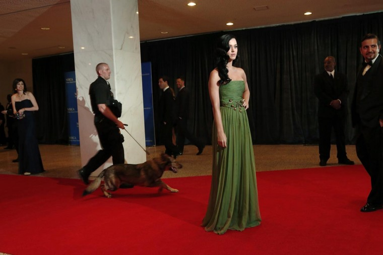 A police dog moves behind singer Katy Perry (3rd R) on the red carpet at the annual White House Correspondents' Association dinner in Washington April 27, 2013. (Jonathan Ernst/Reuters)