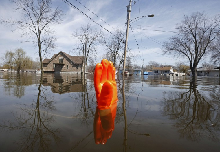 A rubber glove being used as a marker bobs in the water after flooding in Fox Lake, Illinois. The Fox River is expected to crest after heavy rains brought flooding to the area last week. (Jim Young/Reuters)