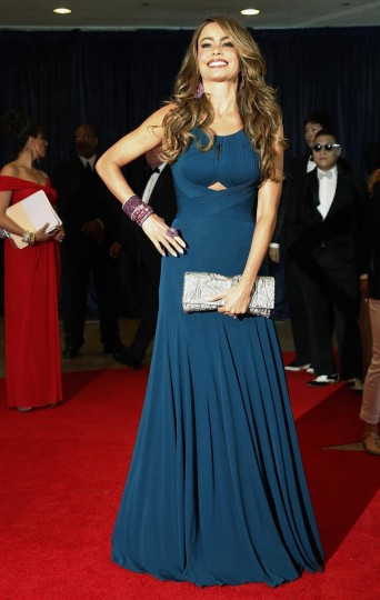 Actress Sofia Vergara arrives on the red carpet at the annual White House Correspondents' Association dinner in Washington April 27, 2013. (Jonathan Ernst/Reuters)