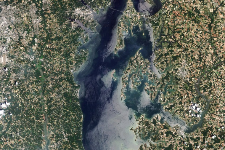 Not so long ago, many islands rose above the brackish waters of the Chesapeake Bay. These small islands offered a predator-free haven for nesting water birds and turtles, while the larger islands supported fishing communities along with wildlife. But now, the muddy, marshy islands are eroding under the combined forces of geology and climate change. The very crust under the Chesapeake Bay is sinking, while sea levels are rising. Made of clay and silt, the islands erode quickly, and many have disappeared altogether. In 1998, the U.S. Army Corp of Engineers began to restore Poplar Island. The project serves two purposes: it restores lost habitat to birds and turtles, and it provides a use for material dredged from Baltimore Harbor and Chesapeake Bay shipping lanes. The method of restoration is visible in the center image, taken on June 21, 2006. Engineers built dikes around sections of the island and have been gradually filling in the center with dredged silt. By 2006, the island had regained the shape it held in the 1800s. NASA image