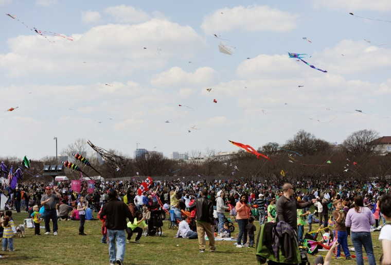 Kite flyers, both experienced and non-experienced, populated the National Mall with kites of all shapes and sizes. (Jon Sham/Baltimore Sun Media Group)