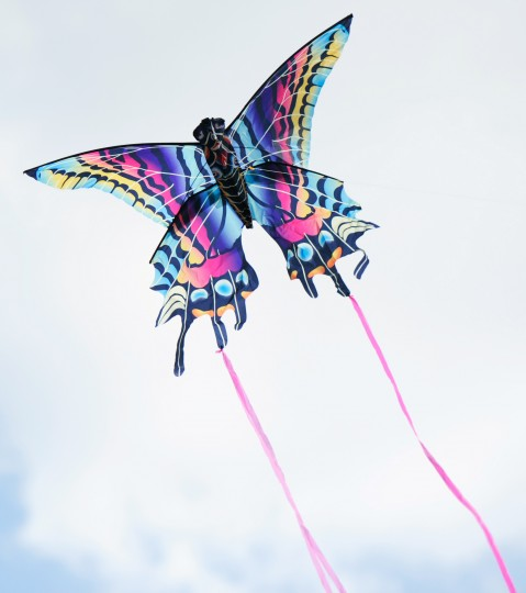 A butterfly kite with pink streamers floats at the Blossom Kite Festival. (Jon Sham/Baltimore Sun Media Group)