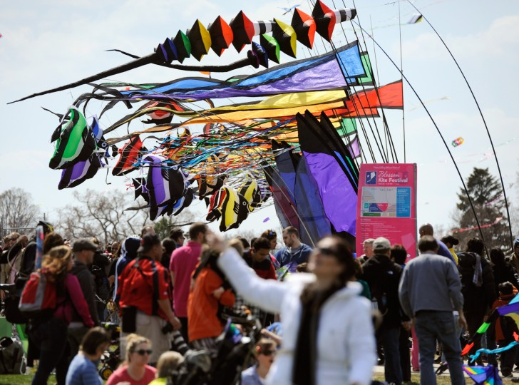 The wind was inconsistent at the festival, but there were several gusts that allowed for kite flyers to get some air time. (Jon Sham/Baltimore Sun Media Group)