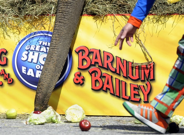 "An elephant and a clown reach for food at the 30th annual ""elephant brunch"" outside Lexington Market. (Barbara Haddock Taylor/Baltimore Sun)"