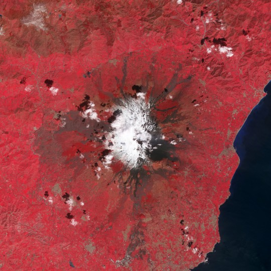 Several vents near the summit of Mount Etna emitted plumes of volcanic gases on March 31, 2013. This false-color (near infrared, red, and green) satellite image was collected by the Advanced Spaceborne Thermal Emission and Reflection Radiometer (ASTER) on the Terra satellite. Volcanic plumes, clouds, and snow are white, while forests are dark red, and fields are bright red. Fresh lava flows are black, and older lava flows with more vegetation are progressively lighter and redder. Towns, located at the foot of the volcano, are brown. NASA image