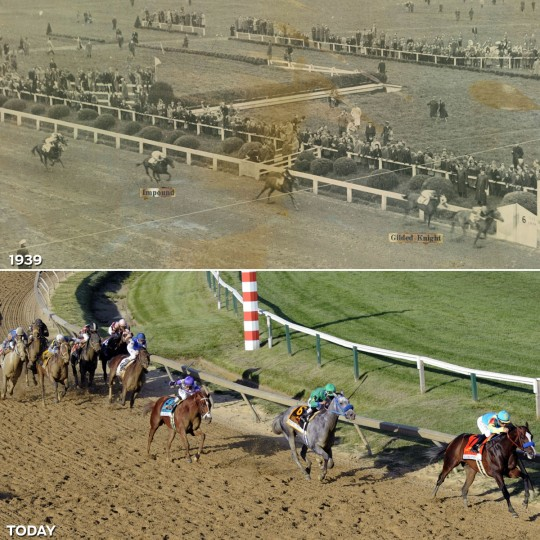FINAL STRETCH: TOP - The Preakness finish from the roof of the grandstand at Pimlico, Maryland, May 13, 1939. (Baltimore Sun) *** BOTTOM - At the final turn of the 137th Preakness Stakes. (Jeffrey F. Bill/Baltimore Sun)