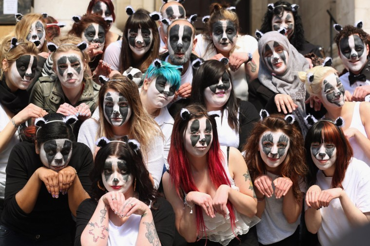 Face-paint wearing campaigners, opposed to the Government's proposed badger cull in England, stage a demonstration outside the Department for Food and Rural Affairs in London, England. The anti-cull protest, which has received the support of Queen guitarist Brian May, was backed by the 'Animal Aid' campaign. (Oli Scarff/Getty Images)