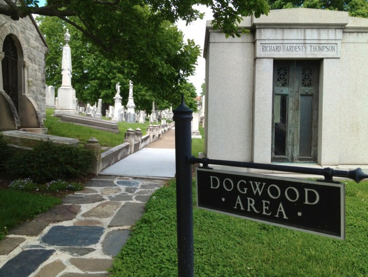 The pass at the Dogwood area where the booth family plot can be found. (Karl Merton Ferron/staff)