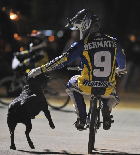 Although Dave Dermatis just lost an exhibition race to his dog Russell, there seem to be no hard feeling as they head back to the staging area. (Gene Sweeney Jr./Baltimore Sun Photo)