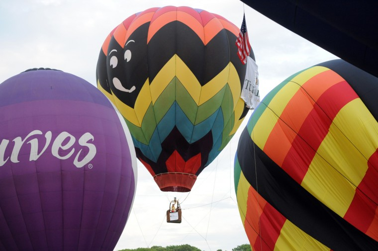 "Tethered hot air balloon ""Goin Batty, too,"" piloted by Bob Ward of Quakertown, Pa., rises as others inflate at the Annual Preakness Celebration Hot Air Balloon Festival at Turf Valley. (Kim Hairston/Baltimore Sun)"
