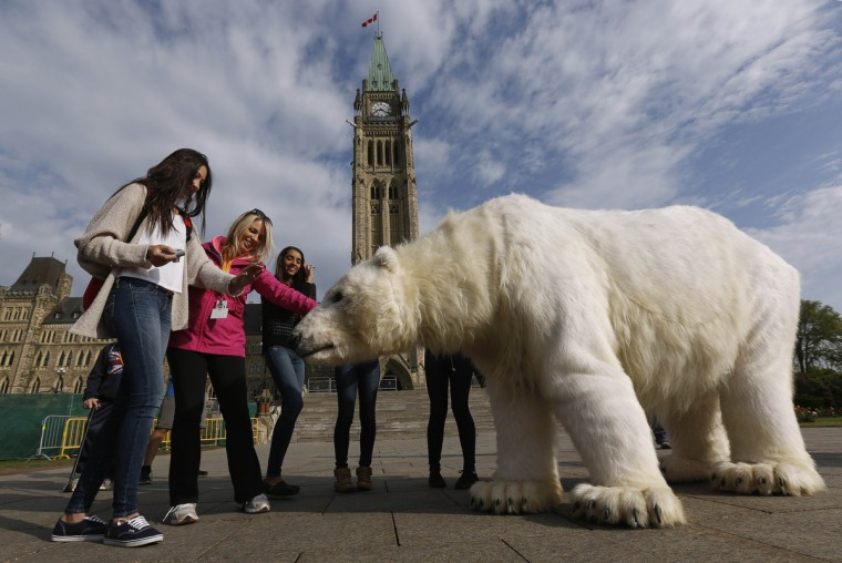 Students on a tour pet Greenpeace activists dressed in a polar bear costume during a demonstration, on Parliament Hill in Ottawa. (Chris Wattie/Reuters)
