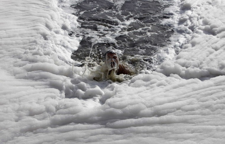 A man swims in the polluted waters of river Yamuna on a hot day in New Delhi. Temperatures in New Delhi on Wednesday reached 43 degrees Celsius (109 degrees Fahrenheit), according to India's meteorological department. (Mansi Thapliyal/Reuters)