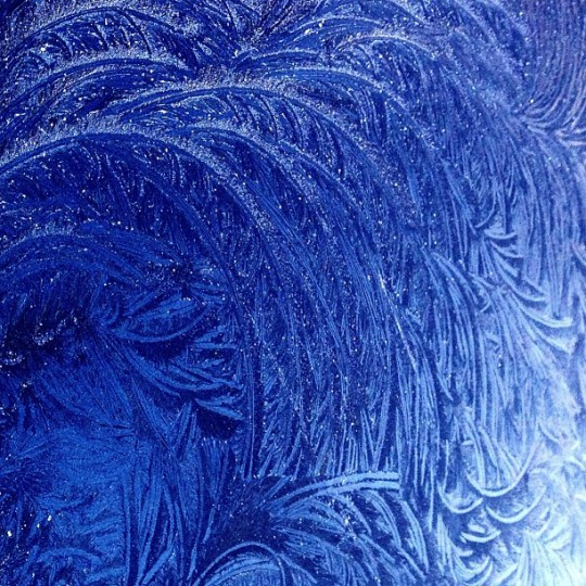Hood of my car on a frosty morning this winter. My car is not blue but my phone saw it that way. I thought it was beautiful. There you go. (Credit: Christopher Eyl)