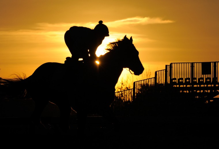 Orb is shown during a morning workout at Pimlico Race Course. (Lloyd Fox/Baltimore Sun Photo)