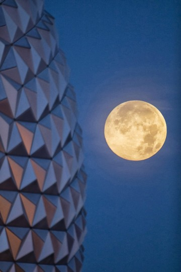 "In this handout photo provided by Disney Parks, the ""supermoon"" is seen with the Epcot center geodesic sphere in the foreground at Walt Disney World Resort in Lake Buena Vista, Florida. (David Roark/Disney Parks)"
