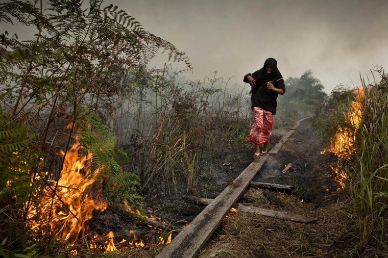 A woman walks trough haze as a forrest fire burns bushes and fields in Siak Regency, Riau Province, Indonesia. The fires on Sumatra have caused record smog in Malaysia and Singapore. Sumatra has stepped up efforts to fight the fires to relieve the conditions. Eight farmers have been arrested for setting the fires on Sumatra Island. (Ulet Ifansasti/Getty Images)