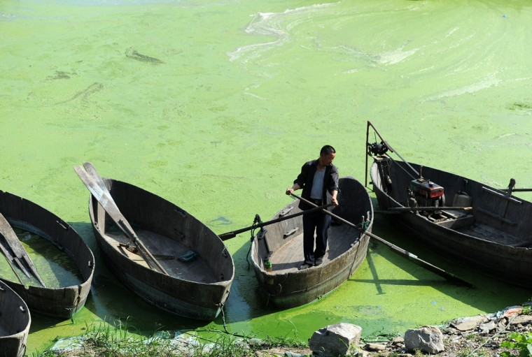 A fisherman works on Chaohu Lake that is filled with cyanobacteria in Hefei, central China's Anhui province. As temperature rises, Cyanobacteria begins to spread again in Chaohu Lake, worsening the water quality and sending out strong smells, local media reported. (Getty Images)