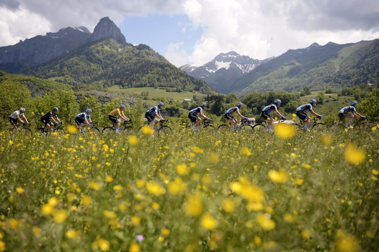 The pack rides during the 139 km fifth stage of the 65th edition of the Dauphine Criterium cycling race on between Gresy-sur-Aix and Valmorel. Britain's Christopher Froome won the stage ahead of Spain's Alberto Contador and USA's Matthew Busche. (Jeff Pachoud/Getty images)