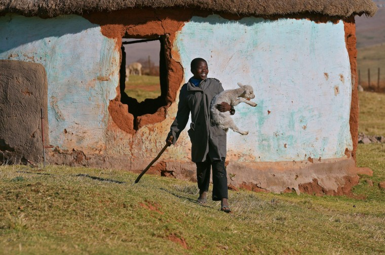 """A shepherd boy is pictured after catching a stray lamb in Qunu, the rural where former South African President Nelson Mandela grew up. Mandela's close family members gathered to hear a sombre prayer wishing the anti-apartheid icon a """"peaceful, perfect, end"""" as he lay in hospital in critical condition with his life seemingly slipping away. (Carl De Souza/Getty Images)"""