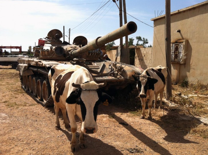 A picture taken on June 7, 2013, shows cows standing next to a Syrian army tank in Dabaa, north of Qusayr, in Syria's central Homs province. Forces loyal to President Bashar al-Assad reclaimed control of the central village of Dabaa on June 6, Syrian state television said, a day after the army and Lebanon's Hezbollah captured a rebel bastion. (Stringer/AFP/Getty Images)