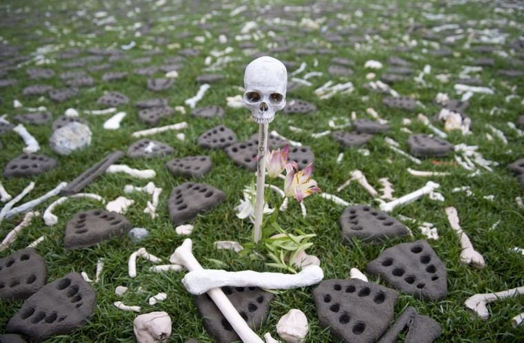 """June 10, 2013: Handcrafted bones are placed on the National Mall as part of the art installation """"One Million Bones"""" containing one million handcrafted bones placed as a symbolic mass grave to raise awareness of genocide and mass atrocities during a three-day event near the US Capitol in Washington. (Saul LOEB/AFP/Getty Images)"""