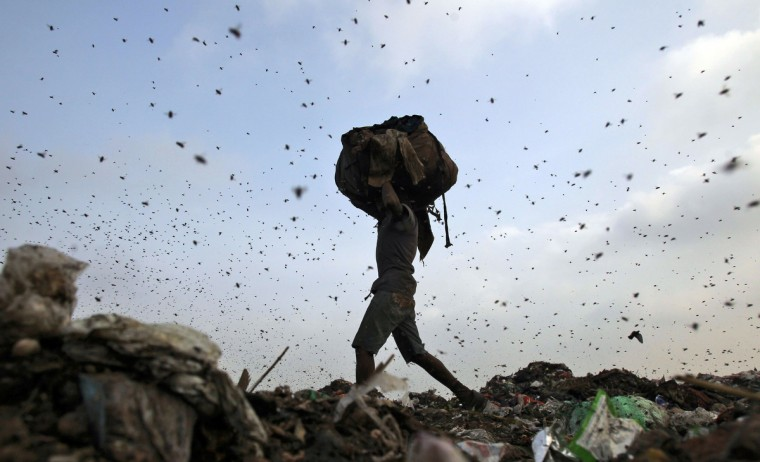 Insects and birds fly in a dump yard as a rag picker collects scraps in New Delhi. (Anindito Mukherjee/Reuters photo)