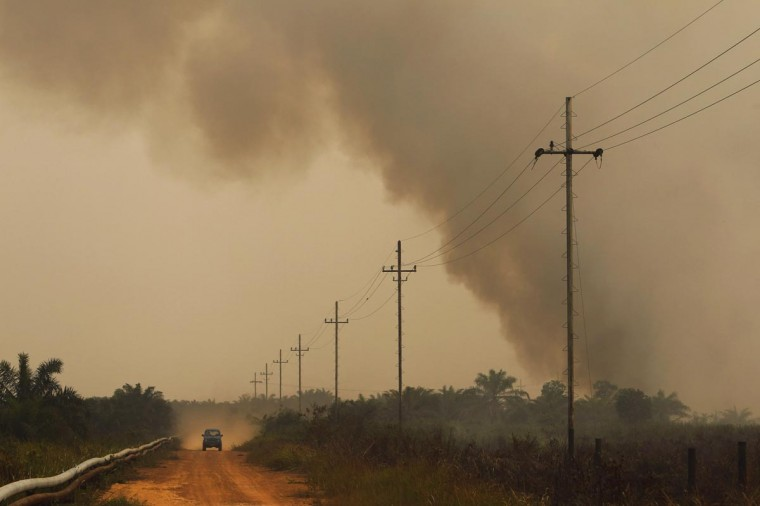 A car drives past fire from burning trees planted for palm oil, during haze at Bangko Pusako district in Rokan Hilir, on Indonesia's Riau province, June 24, 2013. Malaysia declared a state of emergency in two parts of the southern state of Johor on Sunday as smoke from land-clearing fires in Indonesia pushed air pollution above the level considered hazardous. (Beawiharta/Reuters)