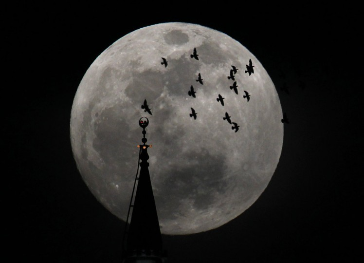 "The full moon rises behind a mosque as birds fly in Amman May 5, 2012. Saturday will see the rise of a full moon called the ""supermoon"" when it arrives at its closest point to the Earth in 2012. (Ali Jarekji/Reuters)"