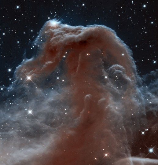 Astronomers used NASA's Hubble Space Telescope to photograph the iconic Horsehead Nebula in a new, infrared light to mark the 23rd anniversary of the famous observatory's launch aboard the space shuttle Discovery on April 24, 1990. (Photo courtesy of NASA/ESA/Hubble Heritage Team)