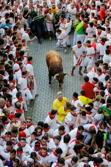 An Alcurrucen's ranch fighting bull stands alone surrounded by a crowd of runners on the way to entering the bullring during the second day of the San Fermin Running Of The Bulls festival in Pamplona, Spain. (Pablo Blazquez Dominguez/Getty Images)