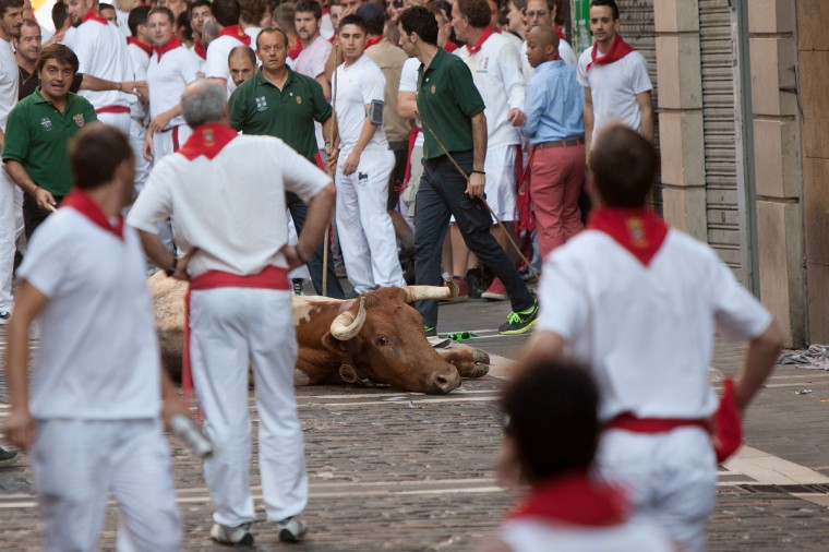 A steer lays on the ground during the Dolores Aguirre's ranch fighting bulls running near Curva Estafeta on the third day of the San Fermin Running Of The Bulls festival in Pamplona, Spain. (Pablo Blazquez Dominguez/Getty Images)