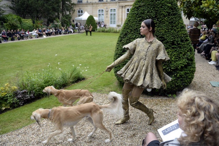 A model walks with dogs as she presents a creation by Frank Sorbier during the Haute Couture Fall-Winter 2013/2014 collection show in Paris. (Martin Bureau/Getty Images)