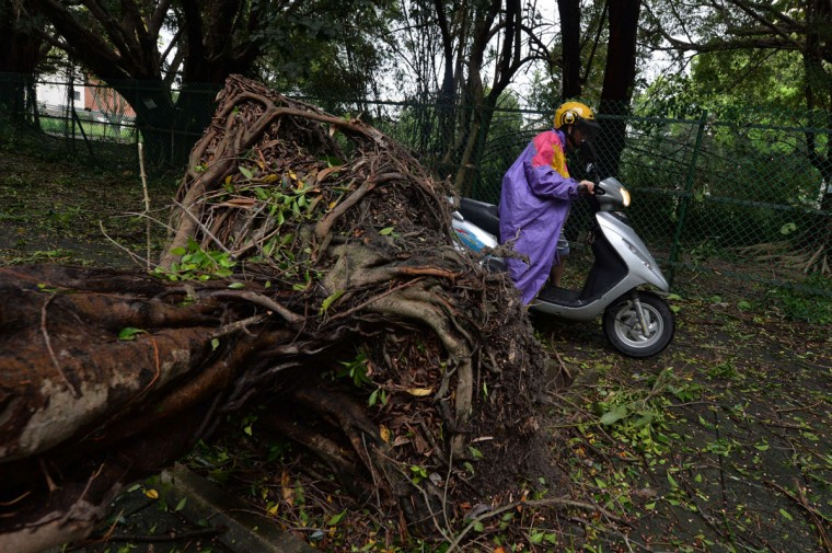 "Scooter riders make their way past fallen trees after Typhoon Soulik hit Taipei on July 13, 2013. Thousands of people were evacuated in Taiwan and the entire island declared an ""alert zone"" as Typhoon Soulik made landfall. (Mark Ralston/AFP/Getty Images)"