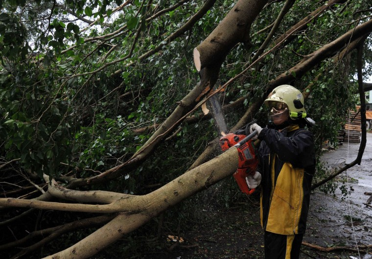 "A firefighter saws a damaged tree beside caused by typhoon Soulik in Taipei on early July 13, 2013. Thousands of people were evacuated in Taiwan and the entire island declared an ""alert zone"" as Typhoon Soulik made landfall early morning. (Mandy Cheng/AFP/Getty Images)"
