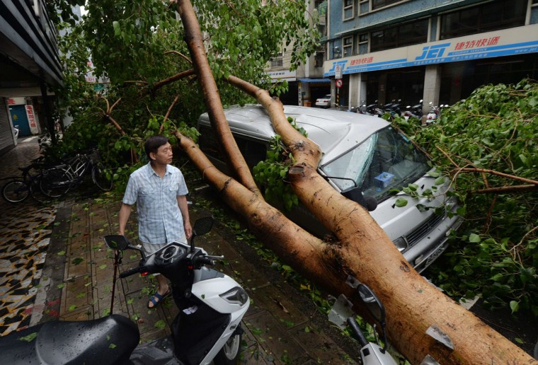 "A man views a vehicle damaged by fallen trees after Typhoon Soulik hit Taipei on July 13, 2013. Thousands of people were evacuated in Taiwan and the entire island declared an ""alert zone"" as Typhoon Soulik made landfall. (Mark Ralston/AFP/Getty Images)"