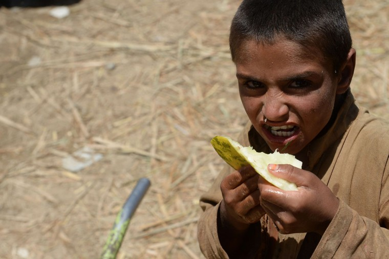 An Afghan youth eats a piece of spoiled melon at a fruit market in Kabul on July 24, 2013, during the holy month of Ramadan. Throughout the month, devout Muslims must abstain from food and drink from dawn until sunset when they break the fast with the Iftar meal. (Shah Marai/AFP/Getty Images)