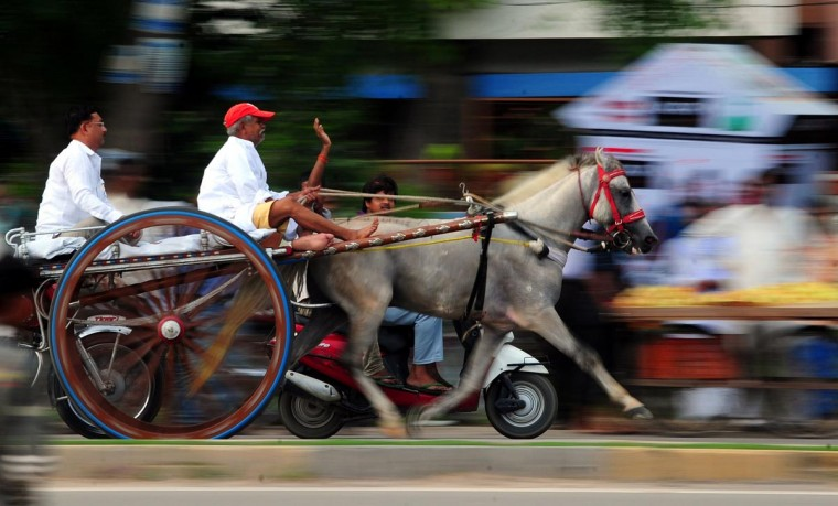 Participants race in the famous 'Ekka' - horse drawn cart - race, which is organized every year during the Holy month of Shravana in Allahabad on July 29, 2013. Shravan is considered the holiest month of the year and on each Monday of the month, known as Shravan Somvar, worshippers offer prayers for a happy and prosperous life. (Sanjay Kanojia/AFP/Getty Images)