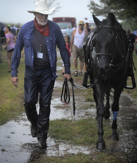 A saltwater cowboy guides his injured horse to the horse trainer after the horse suffered some cuts during the swim. (Erin Kirkland/Baltimore Sun)