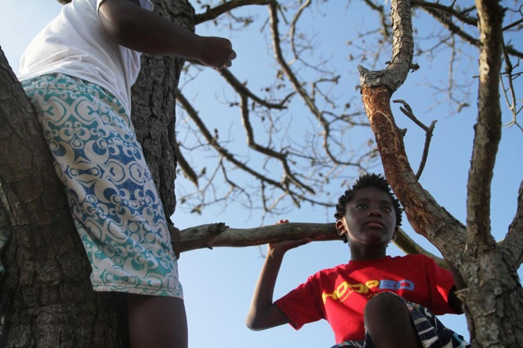 Jacob McCrabb, 10, (left) and Martin McCrabb, 8, of Washington, D.C. reserve prime seating in a tree overlooking the water. (Erin Kirkland/Baltimore Sun)