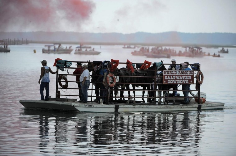 A barge transfers 'saltwater cowboys' and their horses to the ponies' landing spot in preparation for the swim. Behind them, red smoke goes off, signaling the soon start of the swim. (Erin Kirkland/Baltimore Sun)
