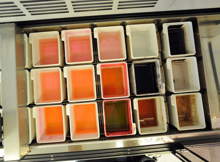 In the histology lab, tissue samples are stained different colors (according to the type of tissue) to prepare them for viewing under a microscope. (Lloyd Fox / Baltimore Sun Photo)
