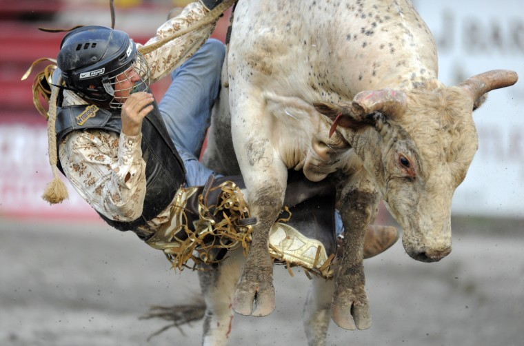 Cowboy Nick Proud of Union Bridge, Md., has trouble freeing his hand from the rope as he falls off the bull he was riding. (Lloyd Fox/Baltimore Sun)